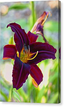 Electric Maroon Lily Canvas Print by Bill Tiepelman
