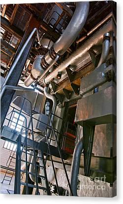 Electric Plant Canvas Print by Carlos Caetano