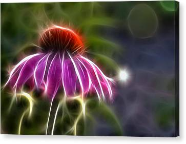 Canvas Print featuring the photograph Electrified Coneflower by Lynne Jenkins