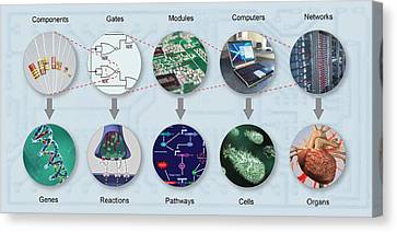 Electronic And Biologic Systems, Artwork Canvas Print by Equinox Graphics
