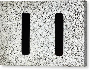 Electrostatic Field Lines No Charge Canvas Print by Ted Kinsman