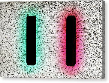 Electrostatic Field Lines Canvas Print by Ted Kinsman