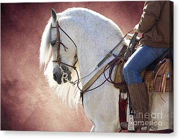 Elegance Canvas Print by Jim and Emily Bush