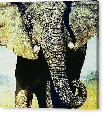 Canvas Print featuring the painting Elephant Close-up by Hartmut Jager