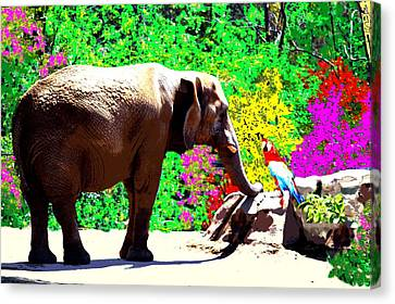 Elephant-parrot Dialogue Canvas Print by Romy Galicia