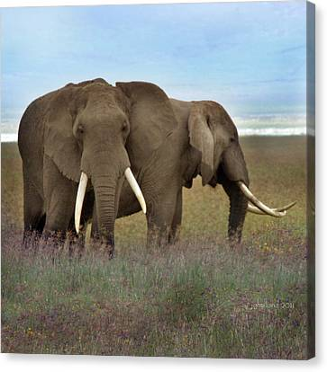 Elephants Of The Crater Canvas Print by Joseph G Holland