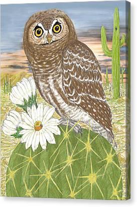 Elf Owl Canvas Print by Walter Colvin