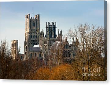 Canvas Print featuring the photograph Ely Cathedral Scenic by Andrew  Michael