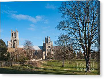 Canvas Print featuring the photograph Ely Scenic by Andrew  Michael