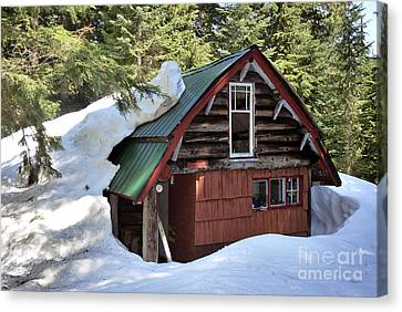 Log Cabins Canvas Print - Emerging Cabin by Bill Thomson