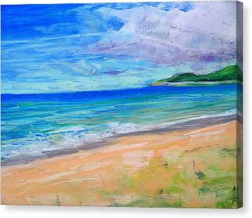 Empire Beach Canvas Print by Lisa Dionne