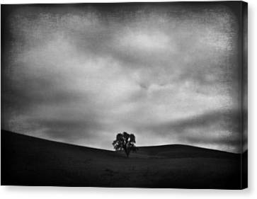 Sky Scape Canvas Print - Emptiness by Laurie Search
