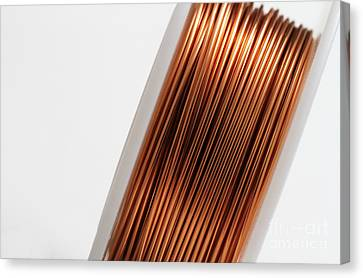 Enamel Coated Copper Wire Canvas Print by Photo Researchers, Inc.