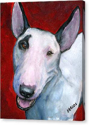 English Bull Terrier Looking Up On Red Canvas Print by Dottie Dracos