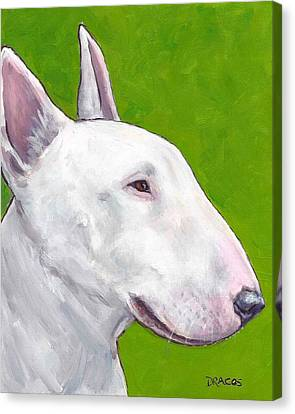 English Bull Terrier Profile On Green Canvas Print by Dottie Dracos