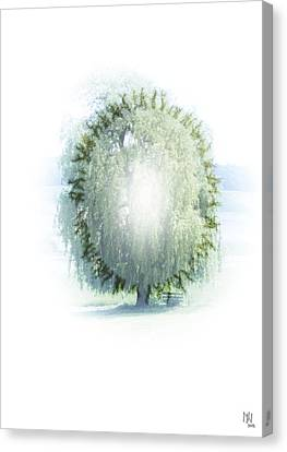 Enlightment Of The Willow Canvas Print by Nafets Nuarb