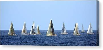 Ensenada Race I Canvas Print