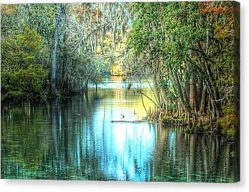 Entrance To Swanee Canvas Print by Ronald T Williams