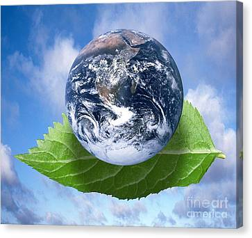 Environmental Issues Canvas Print by Victor de Schwanberg  and Photo Researchers
