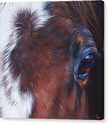 Equine 1 Canvas Print by Elena Kolotusha