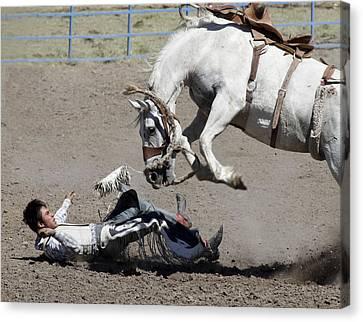 Risk Society Canvas Print - Equine Revenge by Luc Novovitch