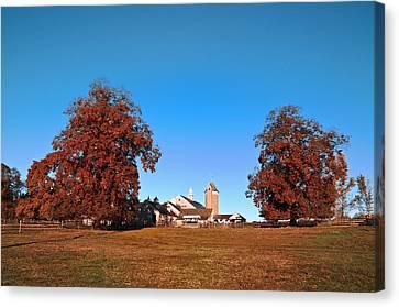 Erdenheim Farm In Autumn Canvas Print