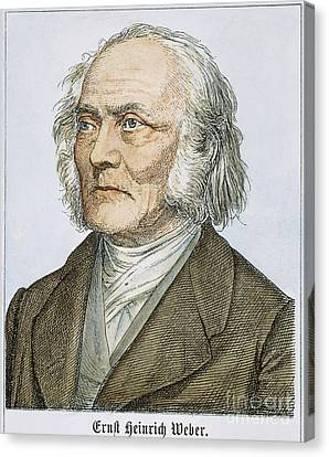 Ernst Heinrich Weber Canvas Print by Granger