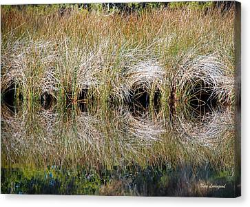 Canvas Print featuring the photograph Escape Hatches by Kay Lovingood