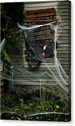 Escaping The Web Canvas Print by LeeAnn McLaneGoetz McLaneGoetzStudioLLCcom