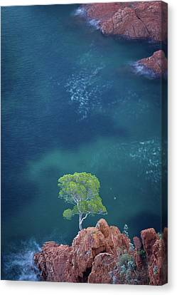 Esterel Mountains Canvas Print by LP photographie