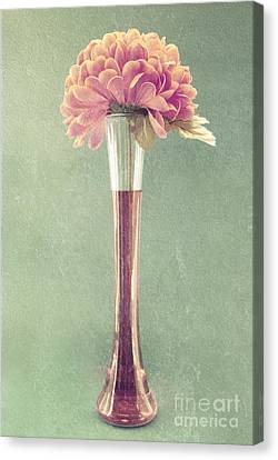 Estillo Vase - S01t04 Canvas Print by Variance Collections