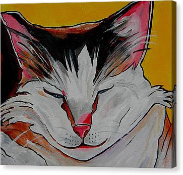 Et Close Up Of Face Canvas Print by Patti Schermerhorn