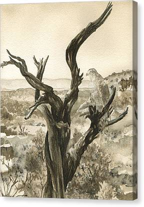 Bare Trees Canvas Print - Eternal Vigil by Anne Gifford