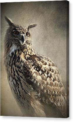 Canvas Print featuring the photograph European Eagle Owl by Ethiriel  Photography