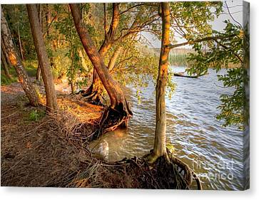 Evening At The Lake Canvas Print by Heiko Koehrer-Wagner