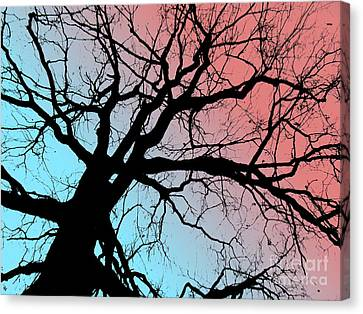 Evening Breaks Canvas Print