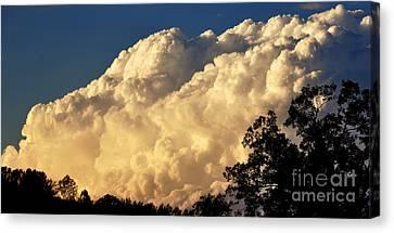 Evening Clouds Canvas Print by Thomas R Fletcher