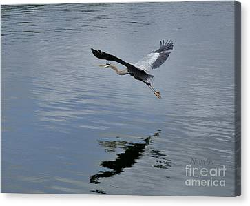 Canvas Print featuring the photograph Evening Flight Reflection by Nava Thompson