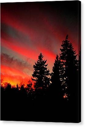 Evening Glow Canvas Print by Kevin D Davis