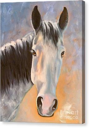 Horse Giclee Canvas Print - Evening Glow by Susan A Becker