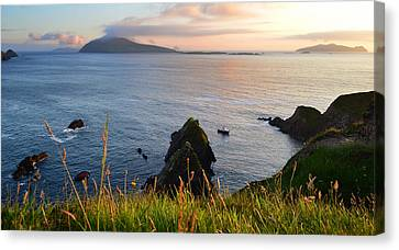 Evening In Kerry Canvas Print by Barbara Walsh