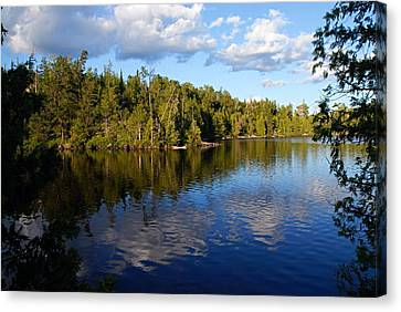 Evening On Jenny Lake Canvas Print by Larry Ricker