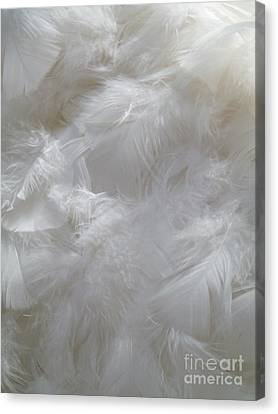 Canvas Print featuring the painting Evidence Of Angels by Newel Hunter