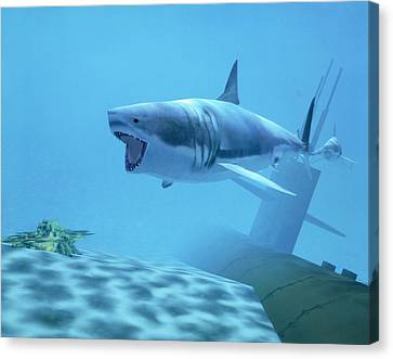 Example Of Reality Centre Graphics, Shark Canvas Print by David Parker