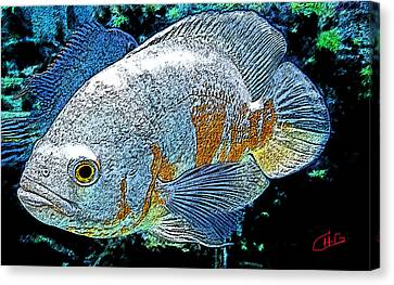 Exotic Fish  Canvas Print by Colette V Hera  Guggenheim