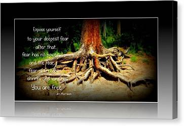 Canvas Print featuring the photograph Expose Yourself by Michelle Frizzell-Thompson