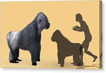 Extinct Giant Gorilla Canvas Print by Christian Darkin