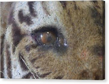 Canvas Print featuring the photograph Eye Of The Tiger by Donna G Smith