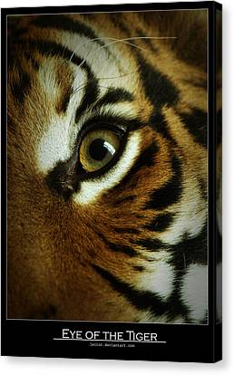 Eye Of The Tiger Canvas Print by Leito R