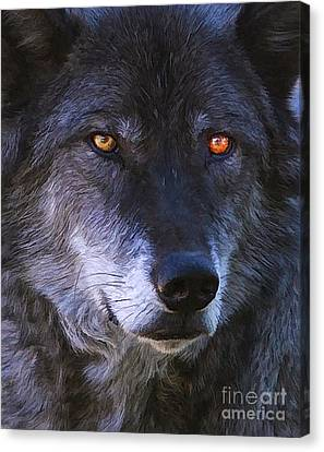 Canvas Print featuring the photograph Eyes by Clare VanderVeen